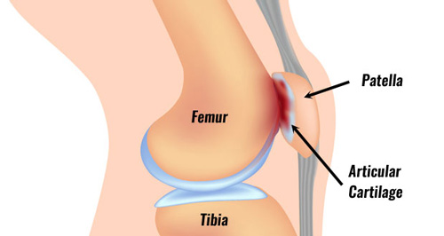 How to turn around a poor job performance review Part 7