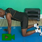 four point kneeling exercise video