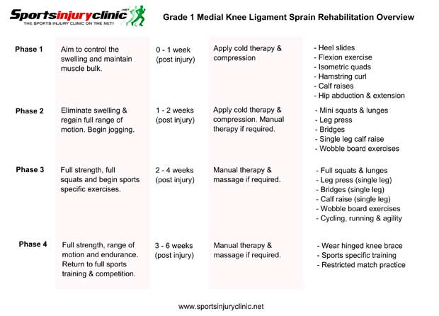 Download medial knee ligament sprain rehabilitation overview
