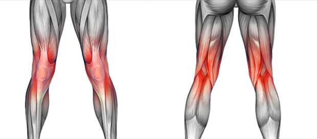 Knee Pain Knee Injuries