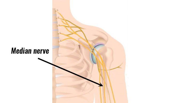 Anterior interosseous syndrome