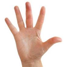 Finger Felon