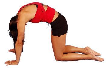 Back stretches - cat stretch