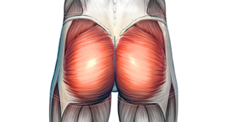 Buttock Pain - Causes, Injuries, Treatment and Rehabilitation