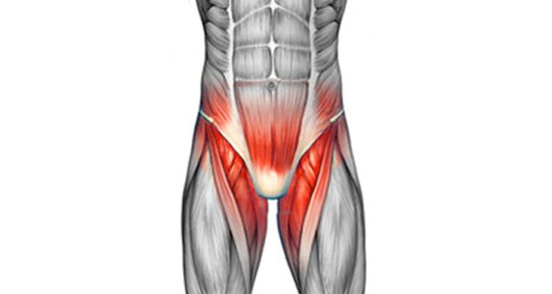 Groin Pain - Groin Injuries - Symptoms, Causes & Treatment