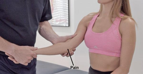 Valgus stress test medial elbow ligaments