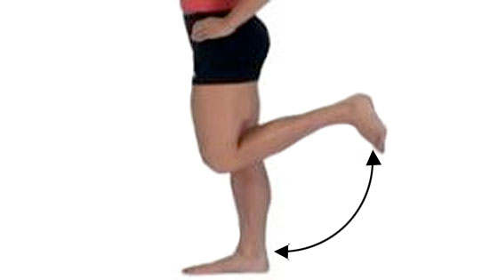 Knee flexion extension mobility