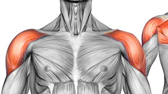 Sports injuries shoulder pain
