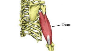 Triceps strain